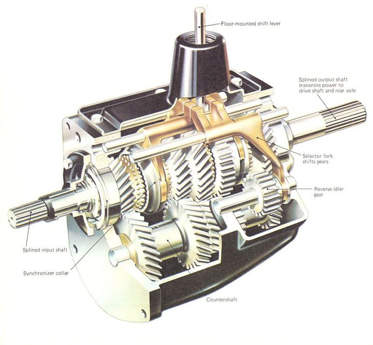 four-speed gearbox with reverse gear with the case cut away